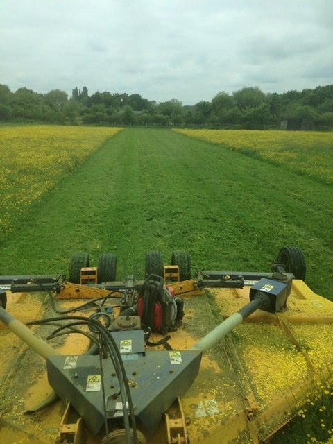 Topping a grass paddock