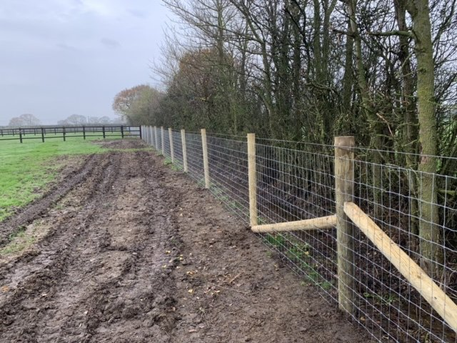 New horse net fence